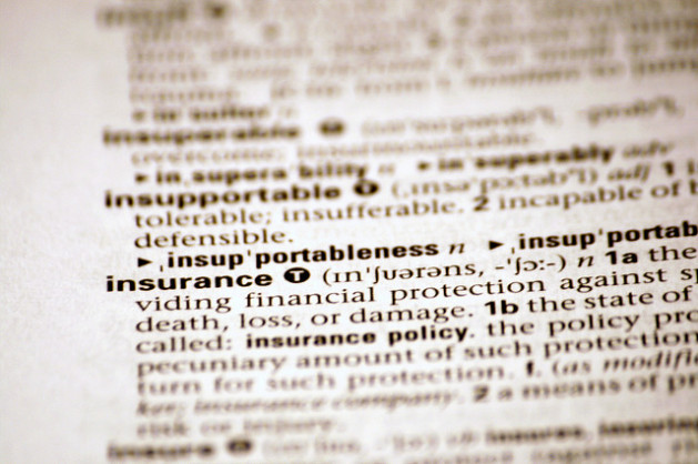 Photo of insurance entry in dictionary