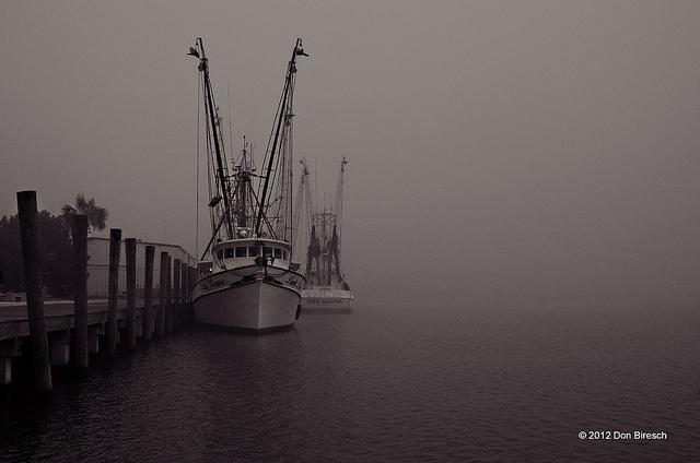apalachicola shrimpboats in fog