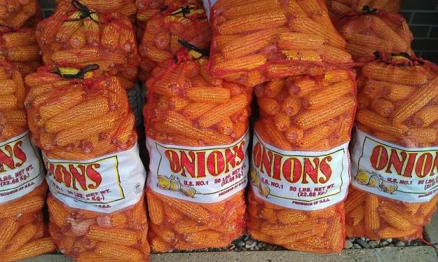Corn in onions bags