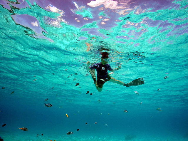 Man snorkeling surrounded by fish