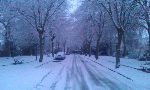 city road covered in snow