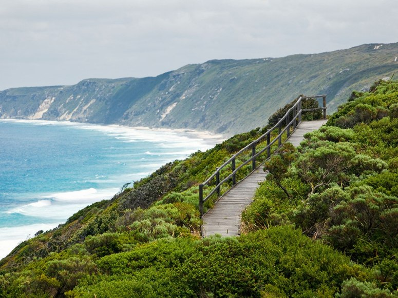 wooden walkway overlooking the ocean on mountains