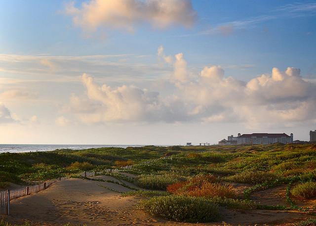 rolling sand dunes on beach