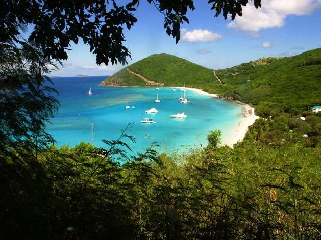 white sand beach in bay with boats moored in the water