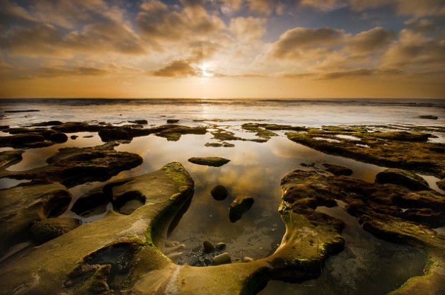 La Jolla tidal pools at sunset