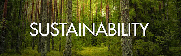 SUSTAINABILITY trees in forest