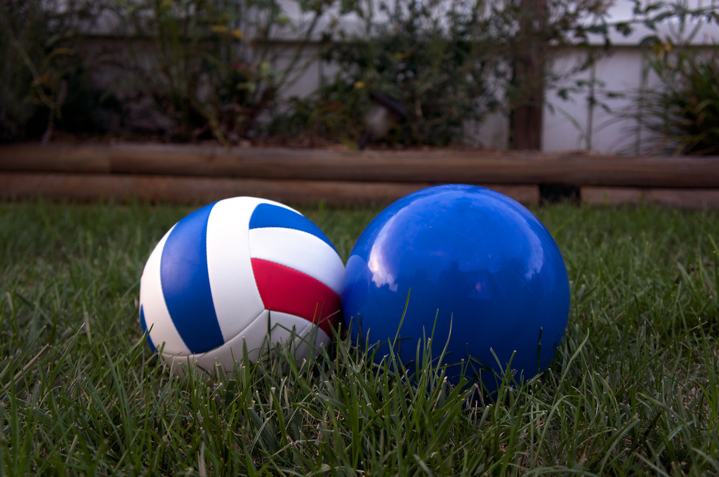 two balls in my backyard.