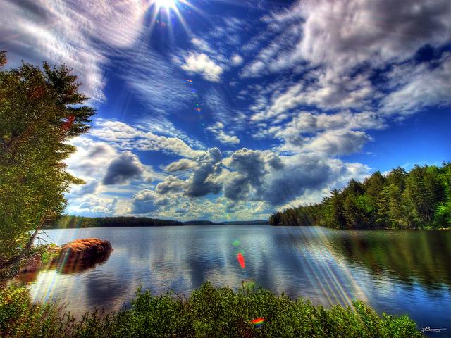 lake during summer