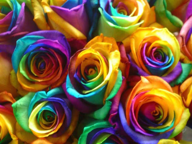 6 ways the grateful dead changed america 39 s look for How to color roses rainbow