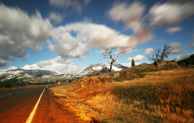 Crowsnest Pass in Alberta Canada Open Road with Tree
