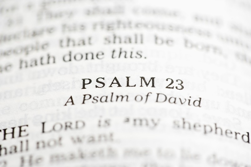 Selective focus of Psalm verses in open Holy Bible.