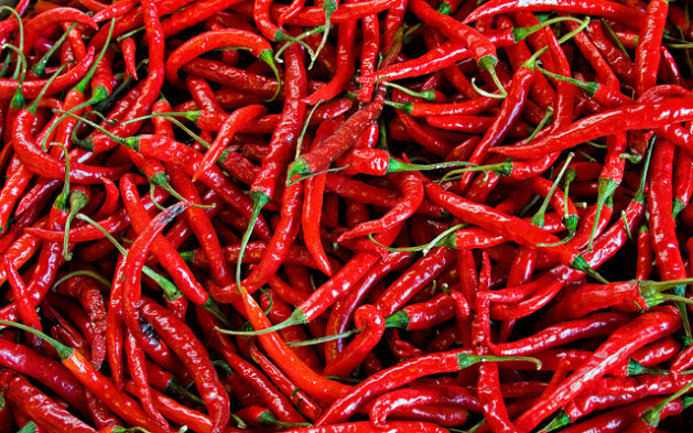 red fingerling peppers