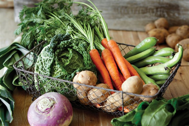 fresh vegetables in wire basket