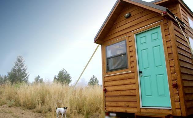 tiny wooden house with cute dog