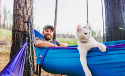 Camping with cats