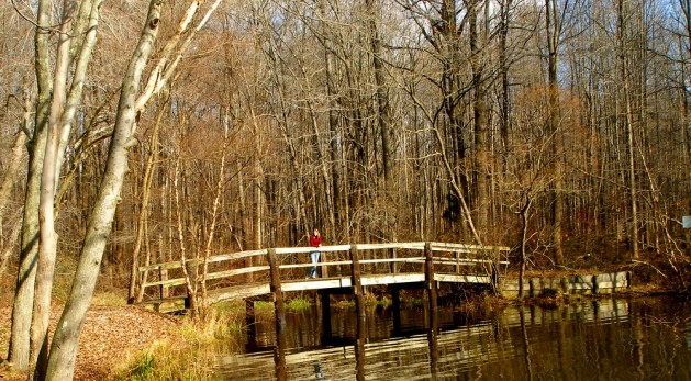 Girl standing on bridge on walking path across an edge of the water at Lum's Pond State Park in Delaware.
