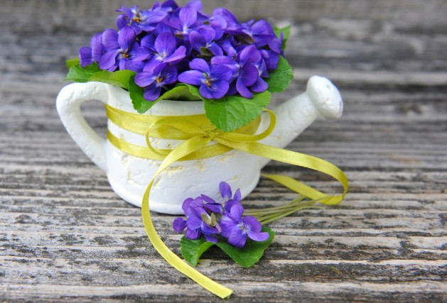 bouquet-violets-flowers-viola-odorata