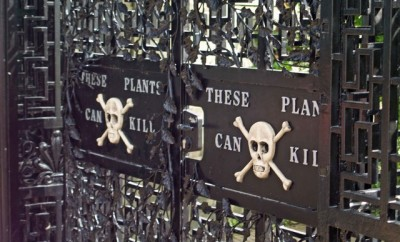 Poison Garden at Alnwick