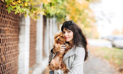 pretty woman beautiful young happy with long dark hair in white coat and dress holding small dog puppy yorkshire terrier on street city background with best dog food brands
