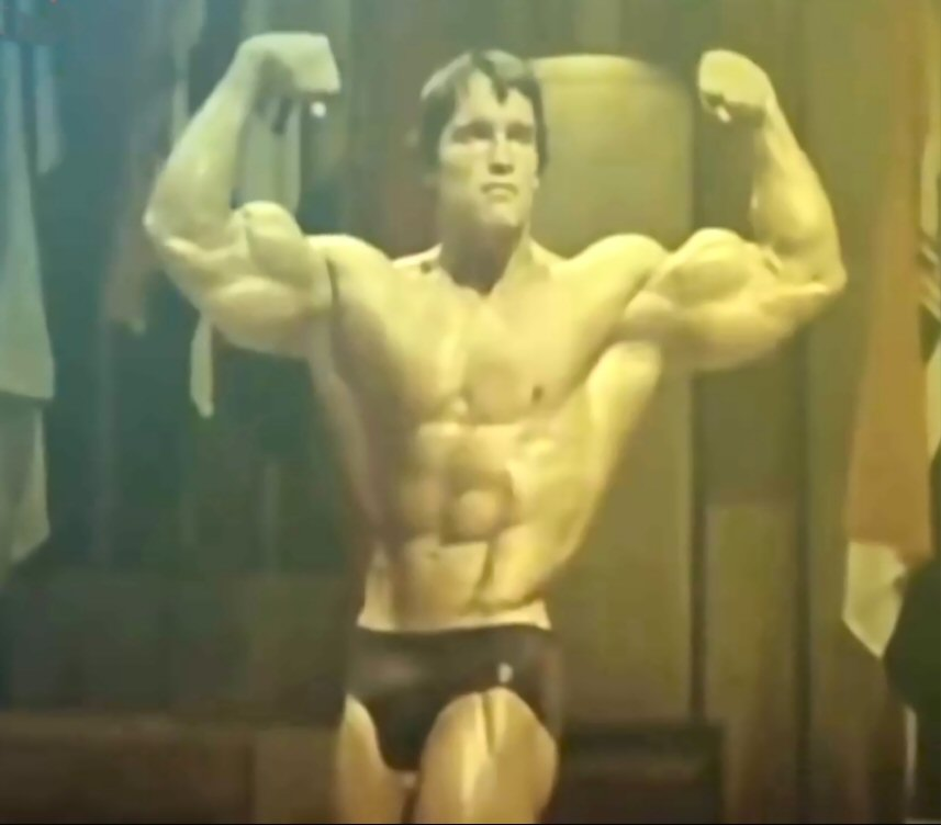 Arnold schwarzenegger blueprint to follow mens trait arnold schwarzenegger blueprint malvernweather Choice Image