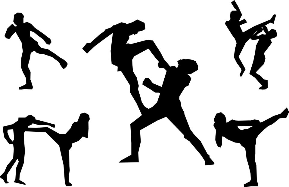 Best Types of Martial Arts - Top Ten List - TheTopTens®