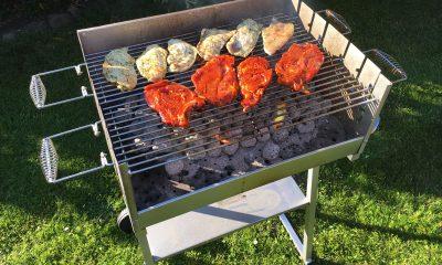 best gas grills 2015