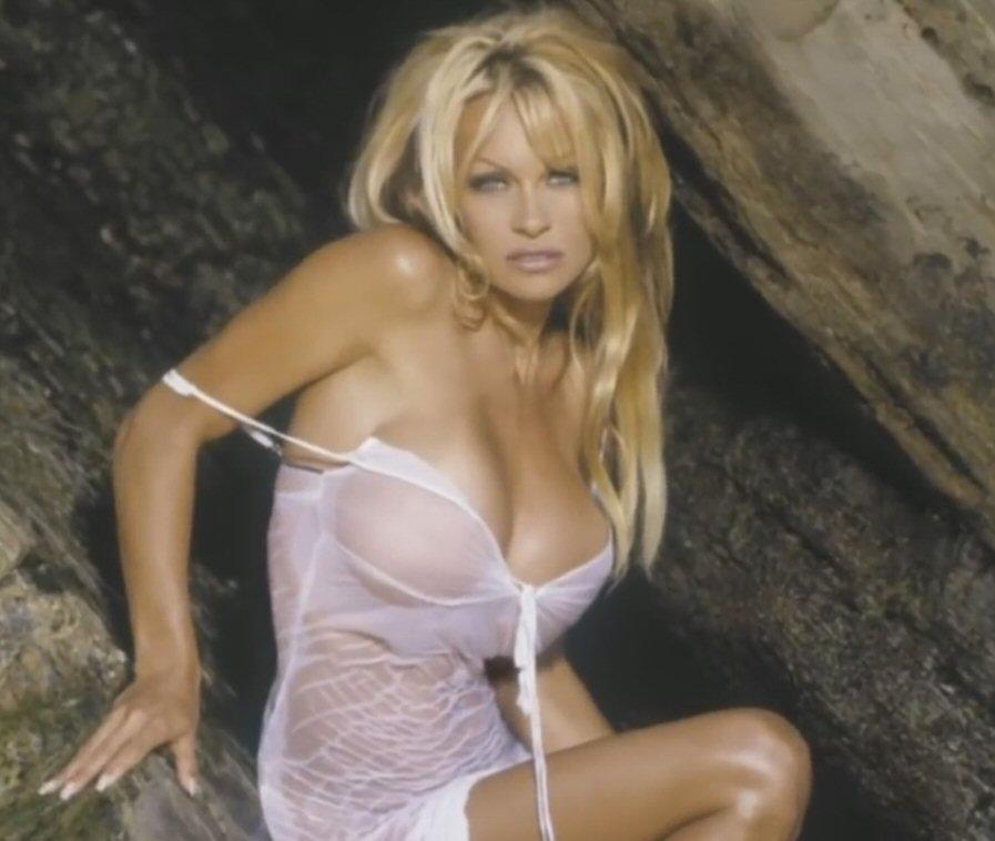 Amateur pamela anderson nude pics
