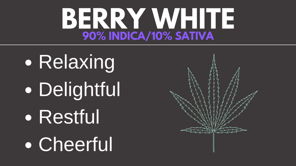 Berry White Cannabis Strain Card