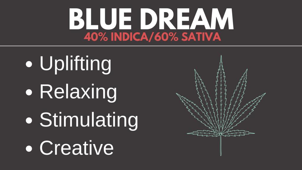 Blue Dream Cannabis Strain Card